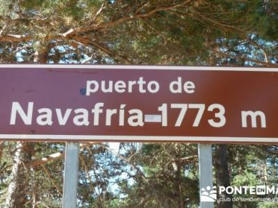 Senderismo puerto de Navafría - escapadas sierra Madrid; federacion montaña madrid